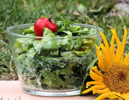 Błyskawiczna surówka z zielonej sałaty