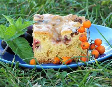 Błyskawiczne pełnoziarniste ciasto ze śliwkami