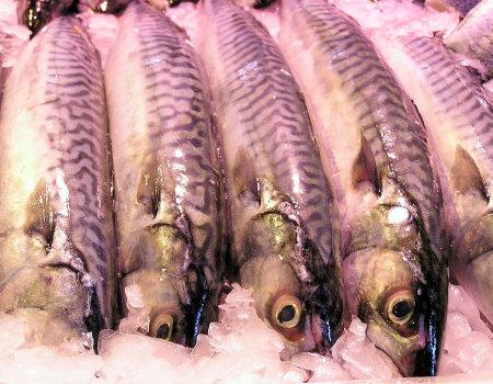 Gotowana ryba zachowa jędrność...