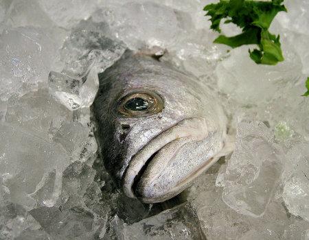 Jak szybko oskrobać rybę?