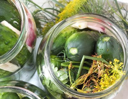 Ogórki kiszone z liściem selera