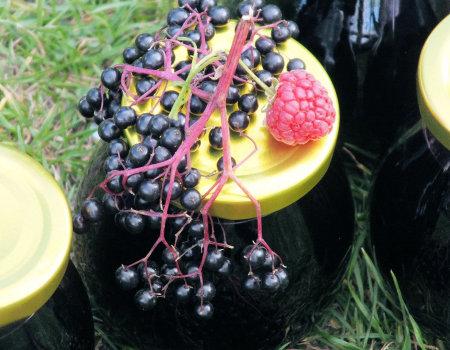 Owocowy syrop na przeziębienie