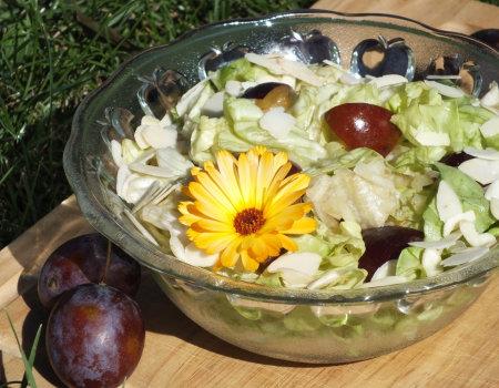 Surówka z zielonej sałaty i śliwek