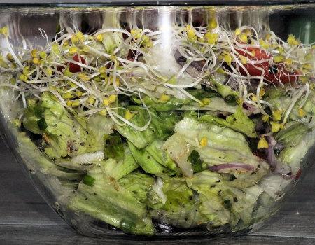 Wiosenna i chrupiąca surówka z zielonej sałaty
