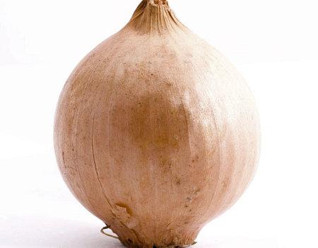 Aby nie płakać przy krojeniu cebuli...