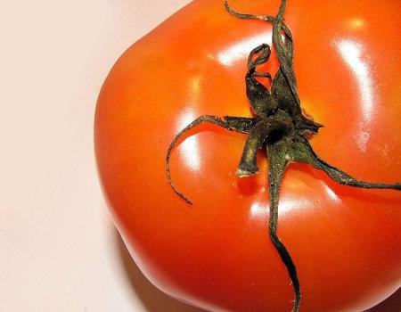 Jak usunąć plamę z pomidora?
