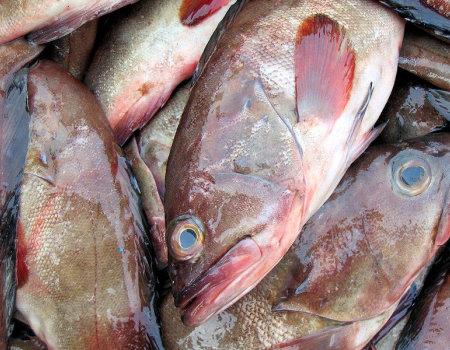Rybę pokrytą grubą warstwą śluzu przed skrobaniem należy...