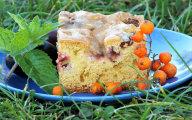 B�yskawiczne pe�noziarniste ciasto ze �liwkami