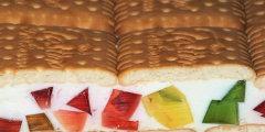 Jogurtowiec z kolorowymi galaretkami